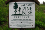 derryX visits the Albany Pine Bush